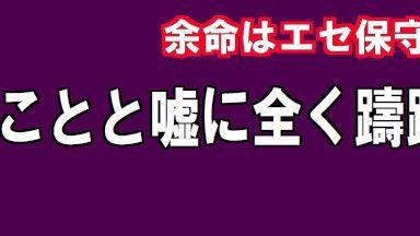 人を騙すことと嘘に全く躊躇のない 日本人にはありえない人非人