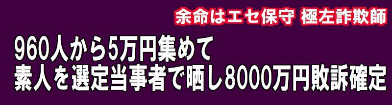 960人から5万円集めて 素人を選定当事者で晒し8000万円敗訴確定